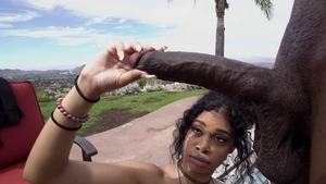Shaved ebony fucks with BBC