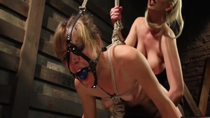 Blonde Mona Wales has a passion for sex in fishnets